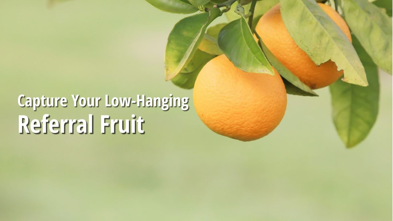 Find More Referrals: Where's Your Low Hanging Fruit?